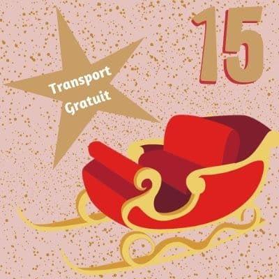 15 Decembrie transport gratuit